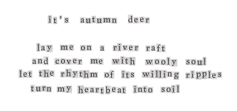 it's autumn deer song